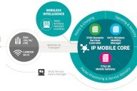 ALU-IP-SolutionGraphic