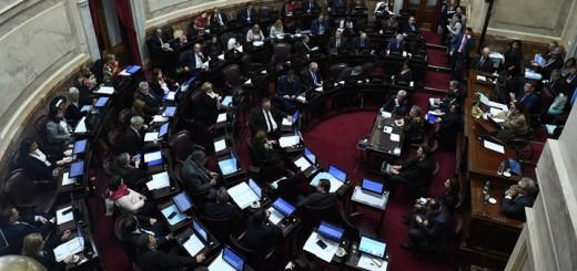 Imagen: Luciano Ingaramo/Cámara de Senadores