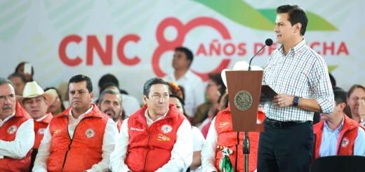 Peña Nieto da detalles del acuerdo con Estados Unidos. Imagen: Presidencia de México.