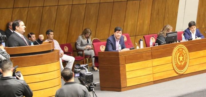 Samaniego defiende el proyecto en audiencia pública. Imagen: Diputados de Paraguay.