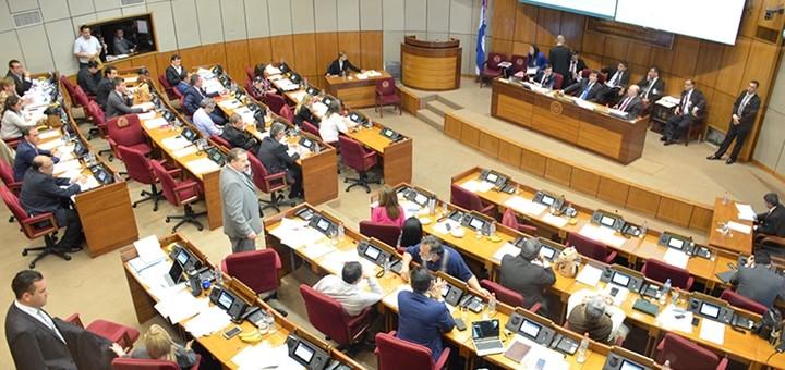 Imagen: Cámara de Senadores de Paraguay.