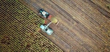 TIM sigue apostando al agronegocio: cubrirá otras 1,9 millones de hectáreas tras acuerdo con Citrosuco