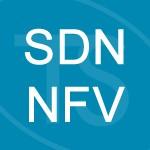 Logo del grupo Redes Virtualizadas (SDN/NFV)